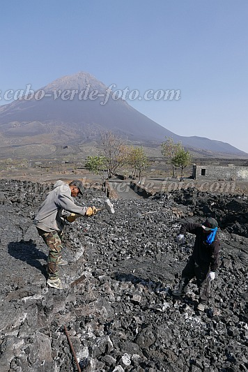 Fogo : Cha das Caldeiras : Inhabitants themselves build their road of the brave : People Work